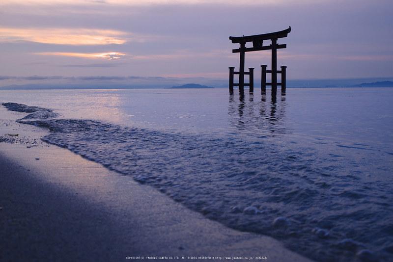 高島,白鬚神社(PK1_0308,36-mm,F8,iso100)2016yaotomi_T