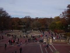 日, 2012-11-18 15:02 - Central Parkの紅葉