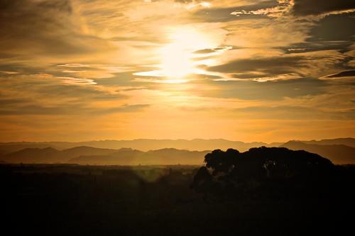 sunset newzealand sun nature beautiful canon photography eos 50mm 14 scenic 7d aotearoa canoneos gisborne canon7d gisbornecity