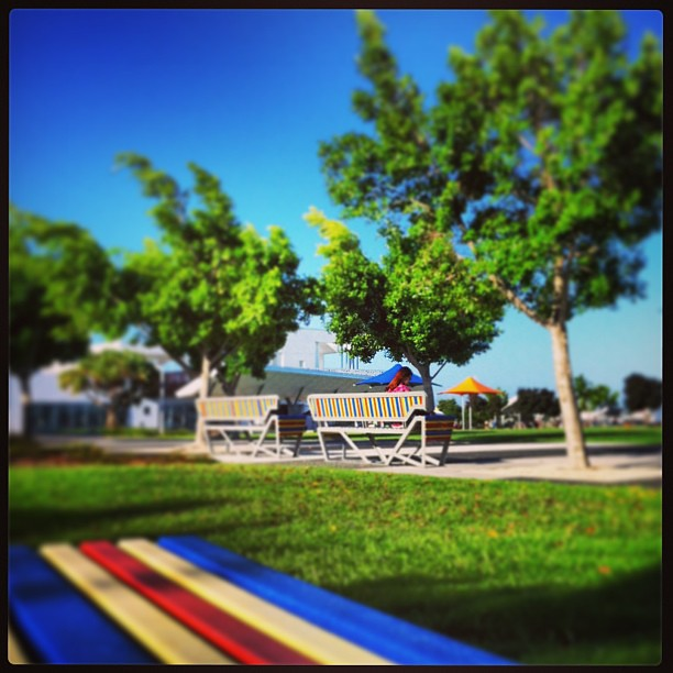 one comfortable afternoon / Broadwater Parklands / Southport / Gold Coast