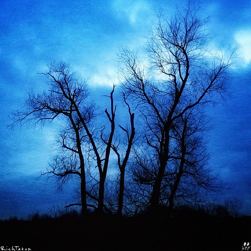 blue sky cloud storm tree nature weather solitude alone solidarity lone grandrapids iphone blogrodent richtatum iphoneography flickriosapp:filter=nofilter uploaded:by=flickrmobilegrandrapidsmichiganunitedstates