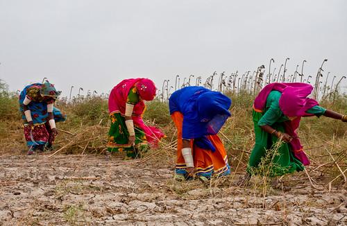 General Photos: Pakistan | by Asian Development Bank