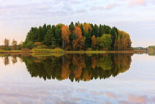 50mm auringonlasku aurinko autumn fall forest highkey järvi lake landscape lens metsä minimalistic mirrored pitkäjärvi prime reflection sun sundown sunset syksy espoo uusimaa finland