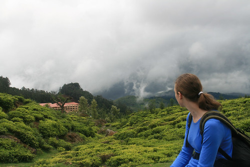 travel portrait india mountains landscape friend view tea altitude tamil ooty southindia nadu nilgiri dodabetta