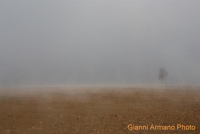 Semplicemente nebbia che sale