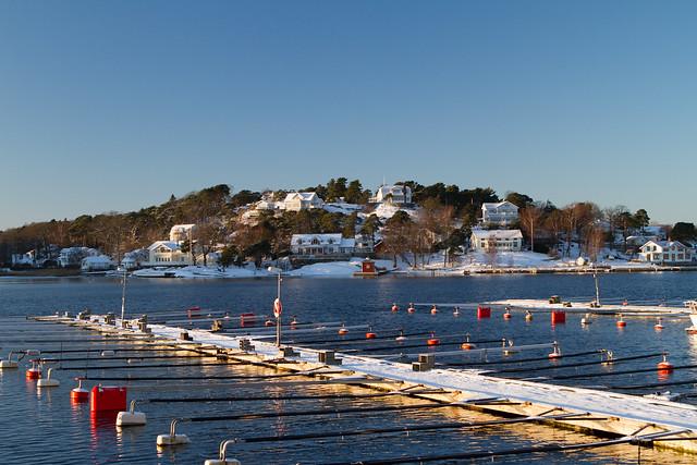 Winter in Stenungsund Harbour - 1