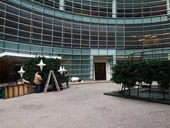日, 2012-11-18 14:13 - クリスマスの飾り付け準備