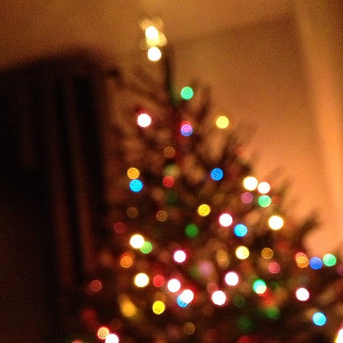 Chilling by the tree. I feel like @lsag, taking intentionally blurry photos. | by Adam Walker Cleaveland