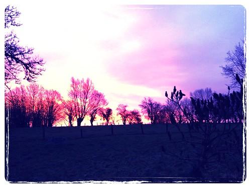 sunrise uploaded:by=flickrmobile flickriosapp:filter=chinchilla chinchillafilter garemarchelezecaussines