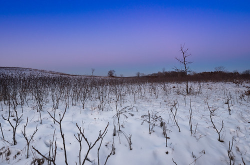 minnesota williamobrienstatepark landscape snow sunset winter