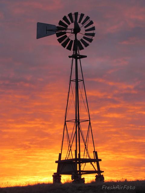 Wayward Windmill Wednesday (Explored)