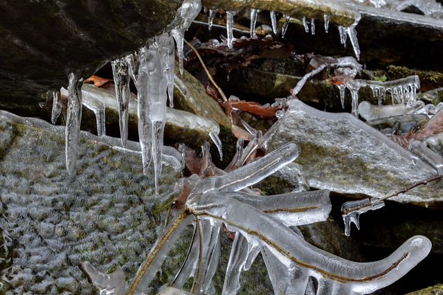 Icicles, Wildcat Creek, White Co, TN