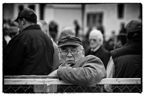 street portrait blackandwhite bw irish monochrome fence candid fair cap sit fullard irerland frankfullard morallean