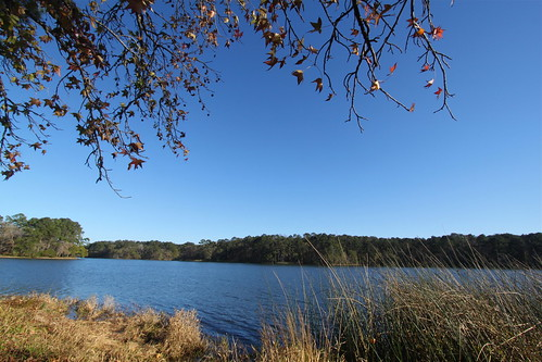 Lake Raven, Huntsville State Park TX   by roy.luck