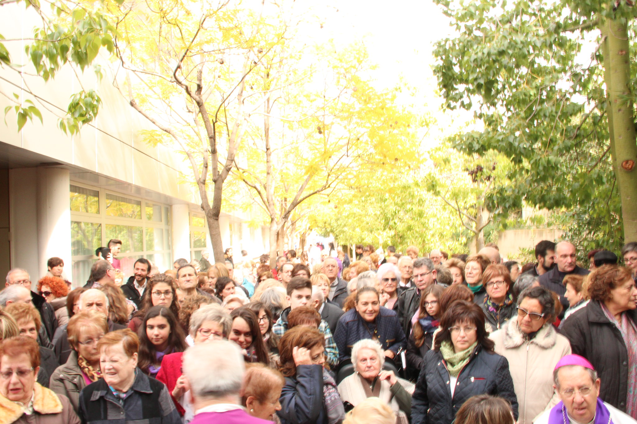 (2016-02-13) - Inauguración Virgen De Lourdes, La Molineta - Archivo La Molineta (067)