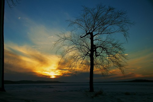 winter sunset lake wisconsin sunrise landscapes day fb wi lakewisconsin thelonelytree tamron18270