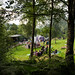 GATHERING IN THE WOODS 2016