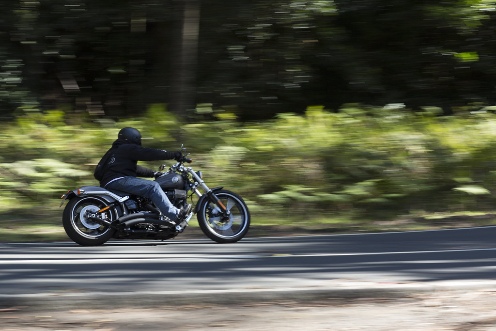 Harley in Macquarie Pass