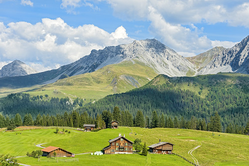 landscape scenery view forest trees grass houses chalets golfcourse alps mountains clouds sky arosa nikon d4 day pwpartlycloudy switzerland