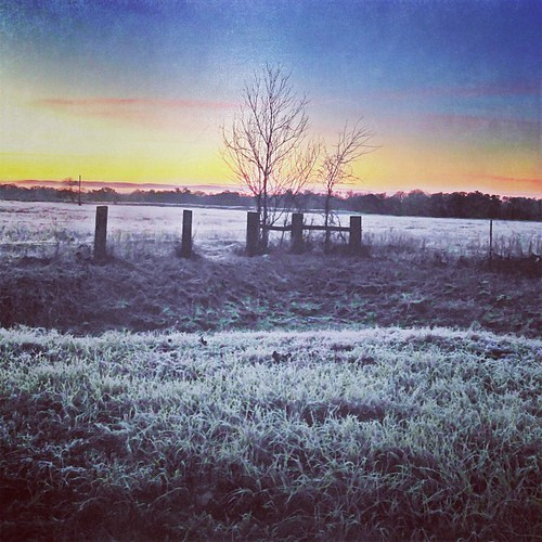 camera morning sunrise square frost texas squareformat hudson sherry 2013 dynamiclight iphone5 psexpress iphoneography instagramapp uploaded:by=instagram scratchcam goodthursday~~~ foursquare:venue=4de95b1a45dde4a28d67fb07 sherrygibson