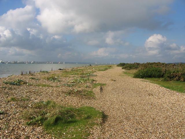 The coast near Warsash