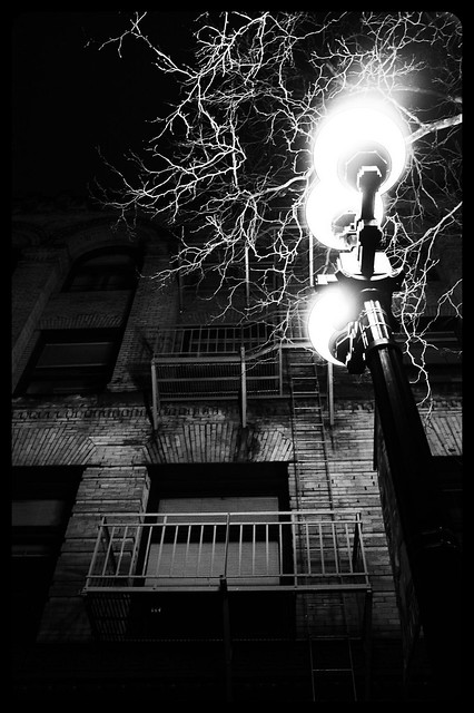 escapes at night