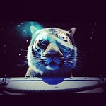 """Life of Pi"" was amazing. #movies #lifeofpi #tiger"