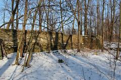 Spitler Barn Ruins - Seneca County, OH