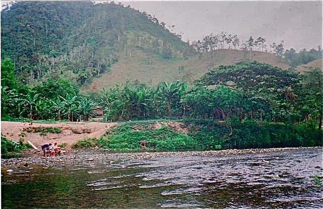 Ecuador farm image