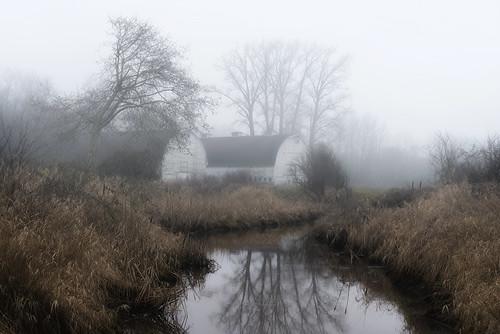 winter brown fog barn washington farm delta olympia wa lacey washingtonstate nisqually wetland nisquallynationalwildliferefuge nisquallybasin twinbarn
