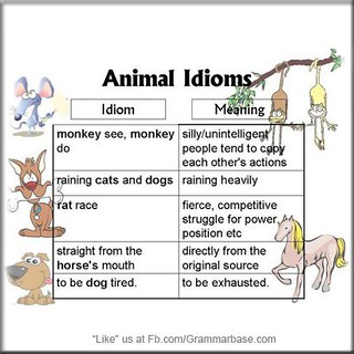 Idioms and their meanings listed below will help you bette