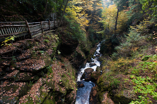 autumn fall pennsylvania gorge delawarewatergap bushkillfalls