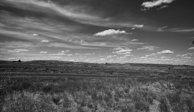 Washington state Countryside (Black & White)