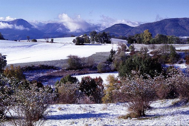 The snow is falling in big flakes,it is winter with these beautiful landscapes covered with snow.