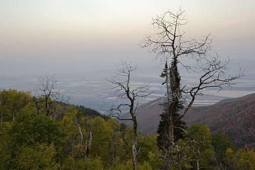 travel trees usa lake nature water sunrise landscape geotagged utah nikon smoke saltlake fires layton d700 projectweather 24120mmf4gvrii pwpartlycloudy