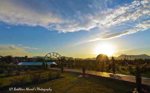 park blue sunset sky plant tree grass yellow clouds golden dusk path sen