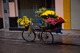 Flower Vendor's Bicycle, Hoan Kiem District - Hanoi, Vietnam | by ChrisGoldNY