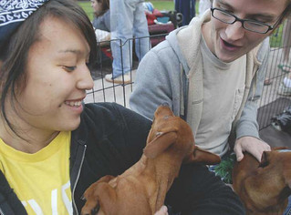 Puppies were brought on campus to de-stress students in 2008