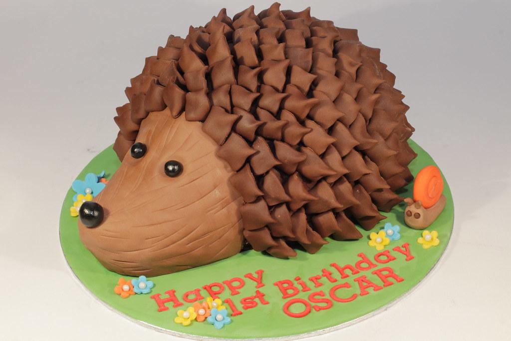 Astonishing Hedgehog Cake Chocolate Baby Hedgehog For A First Birthday Flickr Funny Birthday Cards Online Inifodamsfinfo