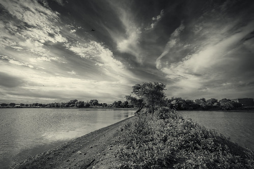 blackwhite buffalogrove deerfieldparkway illinois monochrome moody sky sunset water plane fly clouds