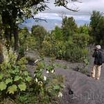 Guatemala, Volca?n Pacaya ascenso 06