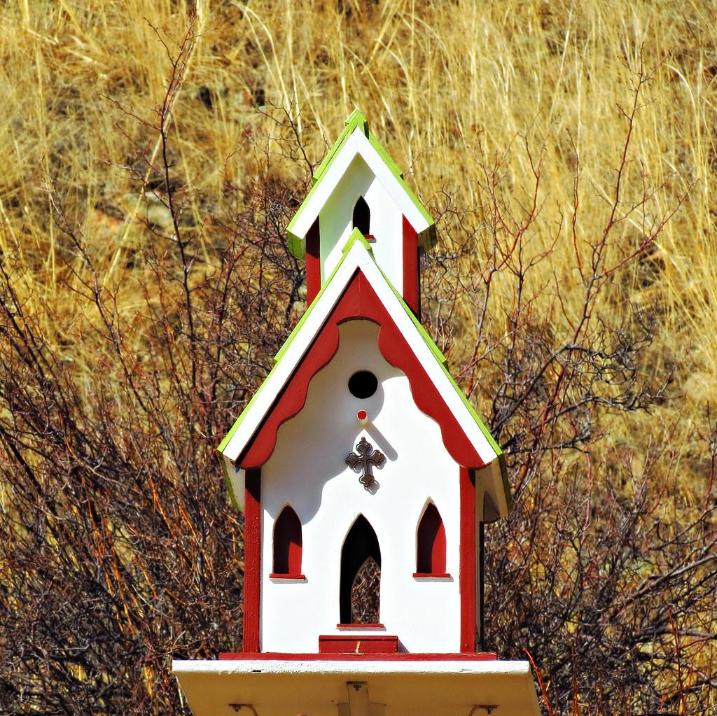 Bird Sanctuary | Idaho Springs, Colorado | Colorado Sands