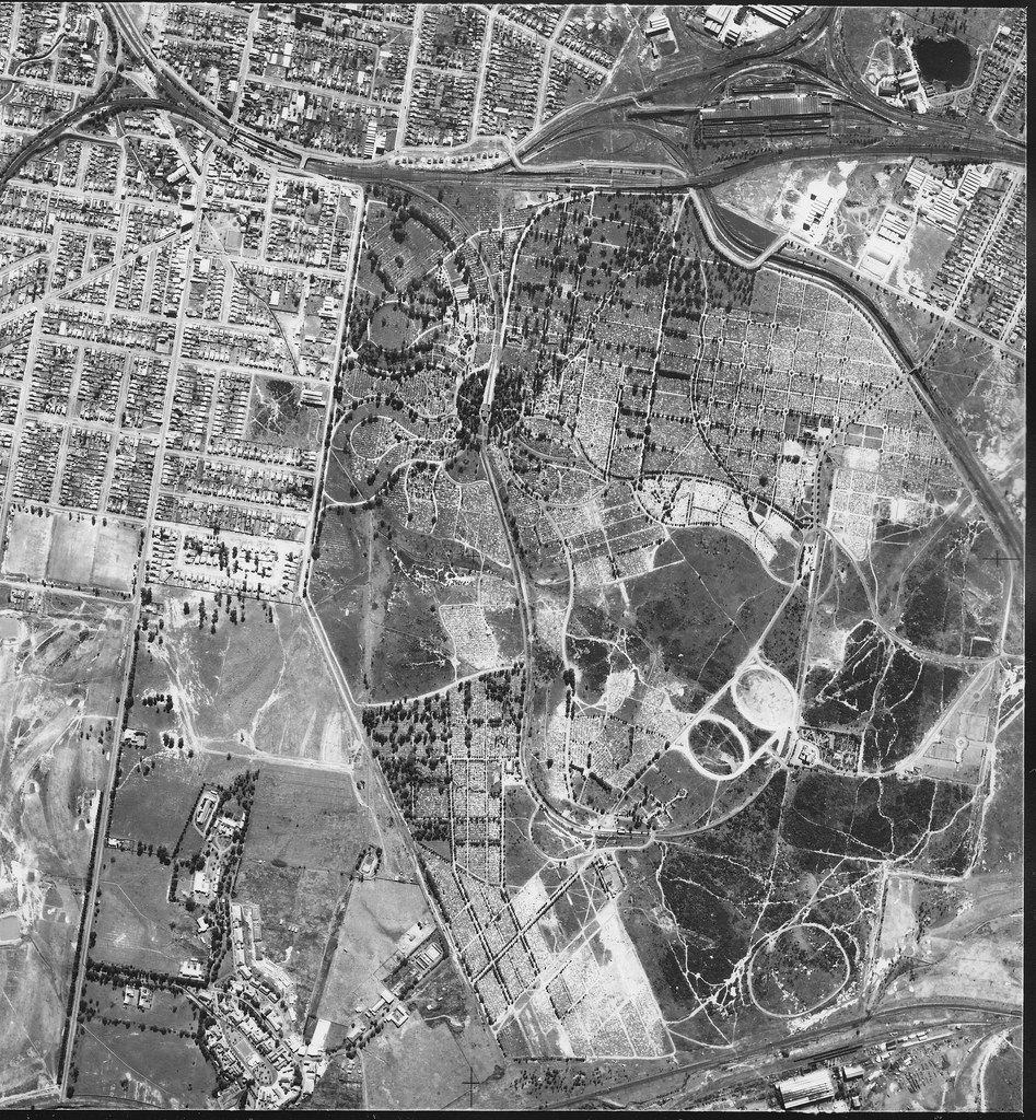 Rookwood Cemetery 1951` - Sydney aerial photo