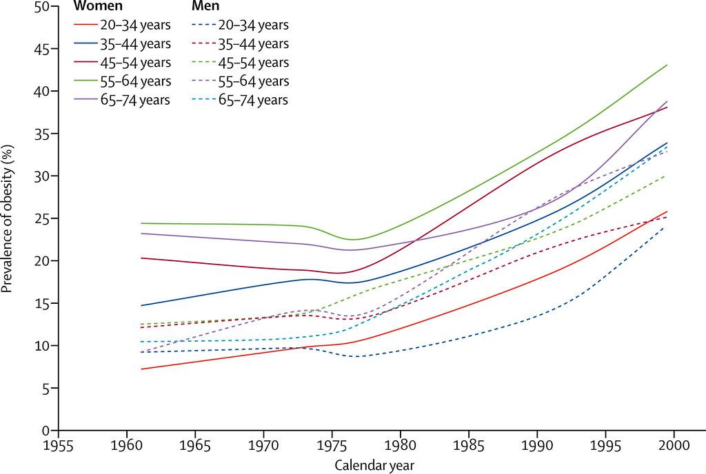 Image result for obesity epidemic