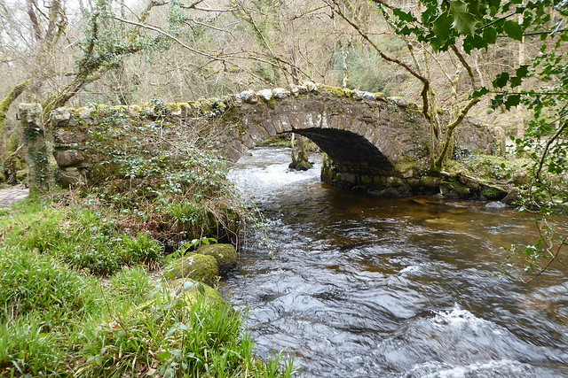 Hisley Wood Pack Horse Bridge