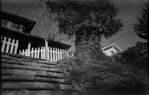 lookingup residence whitepicketfence stairs steps tree ivycovered olympusxa4 rolleiretro400s ilfordilfosol3developer 35mm film 35mmfilm monochrome monochromatic blackandwhite landscape northasheville northcarolina