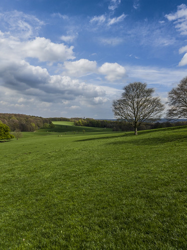 outdoor landscape empty yorkshire green grass sky clouds tree rotherham field park