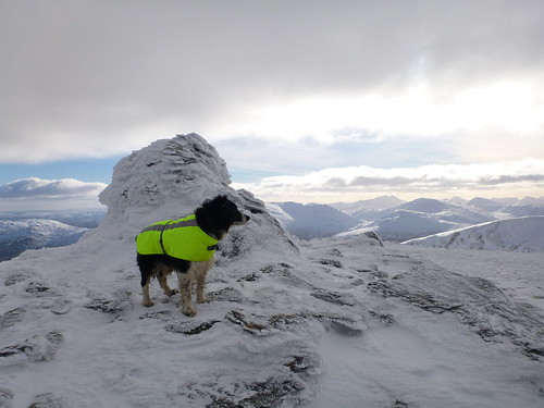 Finn at the top | by 23weasels