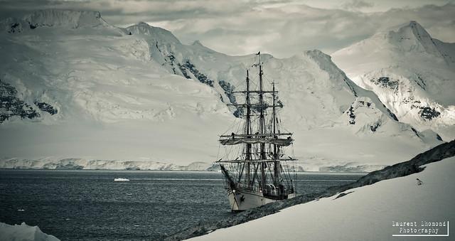 Antarctica, Cuverville Island, Bark Europa, 20130106