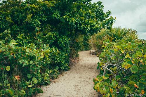 beach coast sand overcast florida venice manasota trail outdoor scenic landscape nature vsco vscofilm color polarizer stump pass stumppassbeach gulfcoast path
